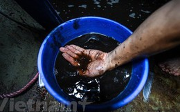 Viwaco thau rửa bể chung cư phát hiện nước đen kịt nồng nặc mùi