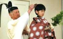 Áp lực khủng khiếp của Hoàng tử Nhật Bản 13 tuổi gánh trên vai tương lai hoàng gia lâu đời nhất thế giới