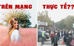 Dân tình check in rần rần đồi cỏ hồng Hàn Quốc, đến khi xem sự thật mới ngỡ ngàng vì đông đến phũ phàng