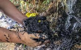 Công ty môi trường công nghệ cao Hòa Bình bác bỏ việc nhận dầu thải