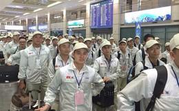 Lao động Việt Nam làm việc bất hợp pháp ở Hàn Quốc đã giảm mạnh