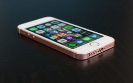 Vì sao iPhone SE 2 có thể là chiếc smartphone hoàn hảo cho Tổng thống Trump?