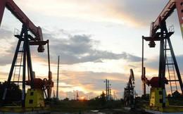 """""""Gã khổng lồ"""" dầu mỏ cảnh báo giá dầu sẽ tăng vọt nếu Mỹ thông qua một lệnh cấm"""