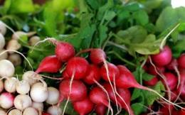 """Củ cải - """"thần dược"""" đối với sức khỏe trong mùa đông"""