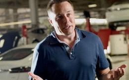 """Elon Musk tuyên bố sắp xây """"siêu nhà máy"""" Tesla ở Đức"""