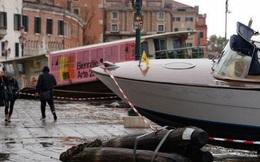 Ảnh: Venice ngập nặng kỷ lục 50 năm, tàu thuyền 'leo lên' vỉa hè