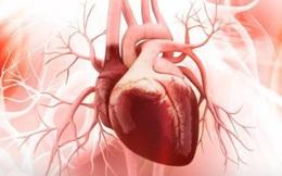 5 thao tác nhỏ giúp bạn kiểm tra chính xác tim và phổi có khỏe mạnh không, sau đó hãy làm ngay 3 việc để tự cứu mình