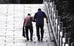 Gần 16.000 người Nhật Bản bỗng dưng mất tích mỗi năm và chỉ một số ít quay về, rốt cuộc họ đã đi đâu?