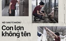 Đọc cuối tuần: Nội tạng từ những con lợn không tên sẽ cứu sống hàng ngàn bệnh nhân tuyệt vọng