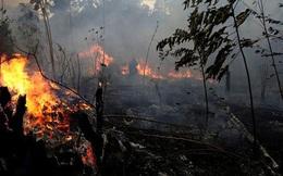 Cháy rừng kỷ lục ở Amazon đã thể hiện hậu quả: Dãy núi dài nhất thế giới hiện đang tan chảy với tốc độ cực nhanh