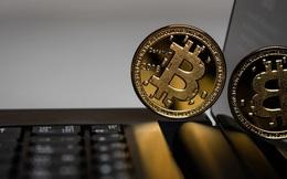 Bitcoin rơi tự do, thị trường đỏ lửa