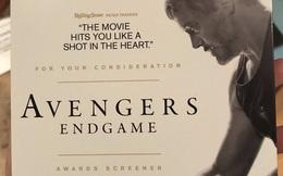 Marvel chính thức gửi screener Avengers: Endgame cho hội đồng Oscar 2020, cuộc chạy đua tượng vàng bắt đầu!