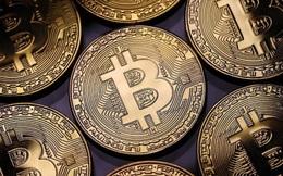 Nhà đầu tư lãi bao nhiêu nếu rót 100 USD mua Bitcoin 10 năm trước?