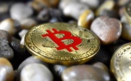 Bitcoin đi ngang, thị trường trái chiều