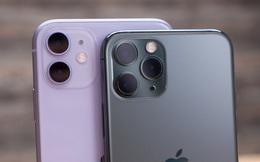 Thành công của iPhone 11 quá ngắn, doanh số iPhone sụt giảm mạnh tại Trung Quốc