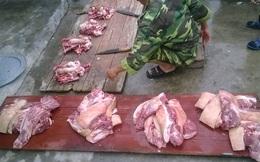 Đắt hơn bò Mỹ, dân Thủ đô đụng lợn ăn chung như thời bao cấp