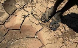 Trong biến đổi khí hậu, cả Châu Phi đang như người mộng du đi thẳng tới bờ vực