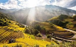Hãng tin CNBC của Mỹ công bố Mù Cang Chải là điểm đến hàng đầu thế giới năm 2020, các tín đồ du lịch Việt Nam lại được dịp nở mày nở mặt