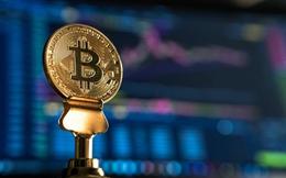 Bitcoin giảm sốt, thị trường chìm trong sắc đỏ