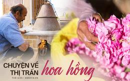 Câu chuyện về những bông hồng thơm nhất thế giới của Iran: Cả một thị trấn toàn hoa hồng, người dân làm một tháng là đủ tiền tiêu cả năm không hết