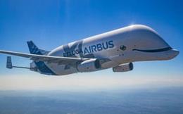 """Máy bay """"cá voi dễ thương"""" Airbus Beluga XL chính thức được đưa vào hoạt động sau một thời gian dài thử nghiệm"""