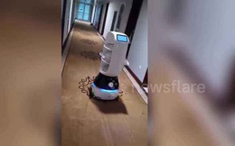 Giữa đại dịch, dân Trung Quốc dùng robot để giao đồ ăn cho người bệnh bị cách ly