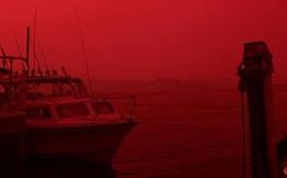 Bầu trời Australia chuyển màu đen kịt như mực ngay giữa trưa, thảm hoạ cháy rừng kinh hoàng ngày càng chuyển biến xấu