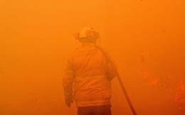 Những con số lột tả thảm họa cháy rừng khiến nước Úc và cả thế giới bàng hoàng