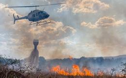 Số tiền hàng chục triệu USD quyên góp giúp nước Úc giữa thảm họa cháy rừng được sử dụng như thế nào?