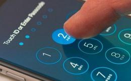 """FBI lại """"cầu cạnh"""" Apple mở khóa iPhone của kẻ sát nhân trong vụ xả súng hồi tháng 12/2019"""