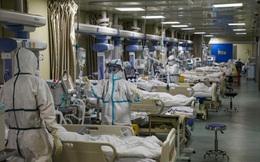 Dịch viêm phổi cấp sắp đạt đỉnh, 500.000 người Vũ Hán có thể nhiễm bệnh