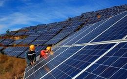 World Bank kỳ vọng Việt Nam mở ra một chương mới về phát triển điện mặt trời, tạo 25.000 việc làm mới/năm, liên tiếp trong suốt 10 năm