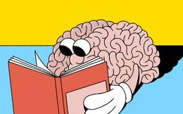 """Cách trị chứng mau quên dành cho người """"não cá vàng"""", học đến đâu """"lạc trôi"""" đến đó"""