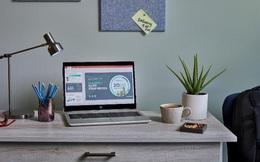 Lời khuyên lựa chọn thiết bị làm việc tại nhà từ HP