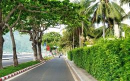 Côn Đảo dừng tiếp nhận khách du lịch từ 24-3