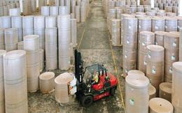 Ngành giấy: Thách thức mở rộng khi nhu cầu giấy bao bì tăng cao