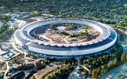 CEO Tim Cook chỉ thị nhân viên văn phòng trên toàn cầu của Apple làm việc tại nhà từ hôm nay
