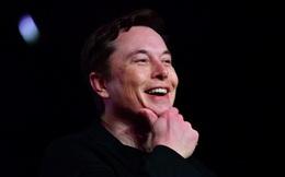 Tesla lập kỷ lục về số xe được giao hàng, giá cổ phiếu cao chưa từng thấy