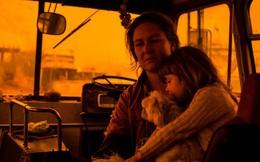 """Hành trình trốn chạy của gia đình Úc khỏi cháy rừng: Rời bỏ thị trấn """"Địa đàng"""", gói ghém đồ đạc lên xe và thuyền lang thang vô định"""