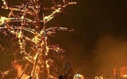 Khói từ đám cháy ở Úc đã lan đến Chile và Argentina