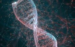 Nhà khoa học Trung Quốc tạo ra máy tính từ ADN, tính được căn bậc hai của 900
