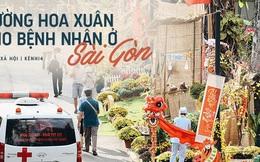 Khi các bác sĩ Sài Gòn chung tay thiết kế đường hoa xuân trong bệnh viện: Đem Tết đến thật gần cho người bệnh ở Chợ Rẫy