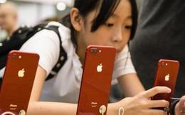 iPhone lại đắt hàng ở Trung Quốc, cổ phiếu Apple lập kỷ lục mới