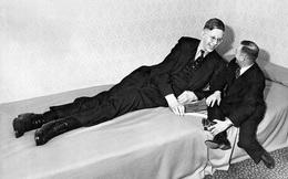 Cuộc đời kì lạ và bi thảm của người đàn ông cao nhất thế giới: Nổi tiếng khắp nơi nhưng ra đi ở tuổi 22 vì một vết nhiễm trùng nhỏ