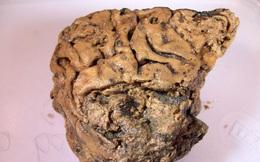 Bí ẩn mảnh não 2.700 năm tuổi, vẫn nguyên vẹn dù cho không hề được tẩm ướp