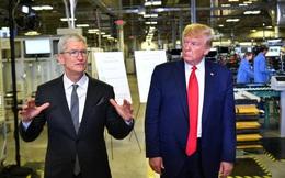 Ông Trump phàn nàn vì Apple không chịu mở khóa iPhone của tội phạm
