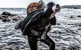 """Câu chuyện cực ngầu về những """"nàng tiên cá"""" 70 tuổi cuối cùng trên đảo Jeju"""