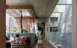Ngôi nhà đẹp mộng mơ với cây xanh và ánh sáng của chủ nhà say đắm cúc họa mi ở miền Trung