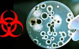 """Nhà khoa học Vũ Hán: TQ không """"chế tạo"""" và thêm HIV vào virus corona, đây là """"sự trừng phạt của thiên nhiên"""""""
