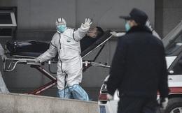 Trung Quốc: Ngồi tù vì tung tin giả về coronavirus lên mạng xã hội